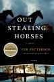 stealinghorses